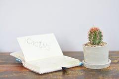 Kaktus und weißes Notizbuch Stockfoto