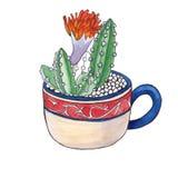 Kaktus w filiżance akwarela Zdjęcia Royalty Free