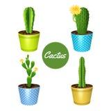 Kaktus W garnkach Ustawiających ilustracja wektor