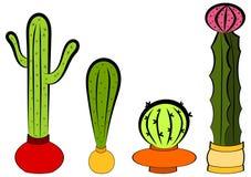 Kaktus W garnkach Ustawiających Zdjęcia Stock