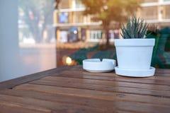 Kaktus w garnku i ashtray na drewnianym stole z zamazanym tłem fotografia royalty free