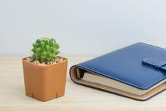 Kaktus w wazowym wystroju z książką Obrazy Stock