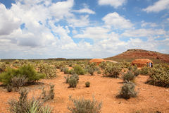 Kaktus w zlanych western statuach Fotografia Royalty Free