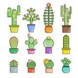 Kaktusa i sukulentów wektoru linii ikony set Egzotyczne kwieciste ogrodowe sylwetki Natura kaktusów projekta kolorowa ilustracja royalty ilustracja