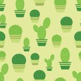 Kaktusa wzór Zdjęcia Royalty Free