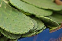 Kaktusblad på en marknad Fotografering för Bildbyråer