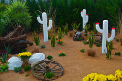 Kaktusen landskap Arkivbilder