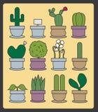 KaktusFarbsatz Stockbilder