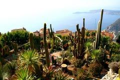 Kaktusgarten in Eze-Dorf Stockbilder