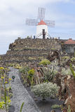 Kaktusgarten in Lanzarote Lizenzfreies Stockbild
