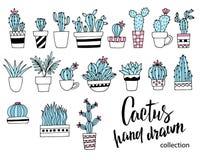 Kaktusgekritzelsatz Übergeben Sie gezogene Vektorillustration, Skizzensammlung Zimmerpflanzen Vier Schneeflocken auf weißem Hinte Lizenzfreie Stockfotografie