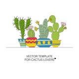 Kaktusmallar Arkivbild