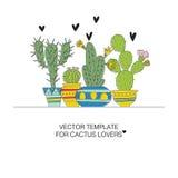 Kaktusmallar Royaltyfria Foton