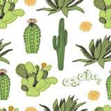Kaktusmuster Lizenzfreies Stockfoto