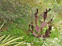 Kaktusowa rzeźba przy Albuquerque BioPark ogródem botanicznym obrazy royalty free