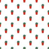 Kaktusowego roślina garnka wzoru bezszwowy wektor ilustracja wektor