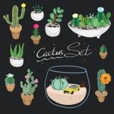 kaktusowej rośliny ustalony tłustoszowaty typ ilustracja wektor