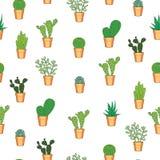 Kaktusowy bezszwowy wzór Zdjęcie Stock