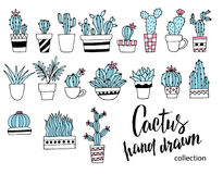 Kaktusowy doodle set Wręcza patroszoną wektorową ilustrację, nakreślenia domowe rośliny kolekcja cztery elementy projektu tła sno Fotografia Royalty Free