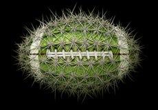 Kaktusowy futbol zdjęcia stock