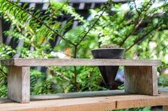 Kaktusowy garnek z rożkiem Obrazy Stock