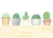Kaktusowy odgórnego widoku set royalty ilustracja