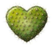 Kaktusowy serce Zdjęcie Royalty Free