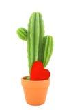 kaktusstearinljus Arkivbild