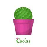 Kaktusväxtillustration Arkivbild
