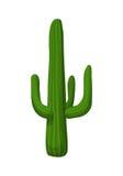 Kaktusväxtillustration Royaltyfria Foton