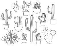 Kaktusvektoruppsättning, hand dragen samling av olika suckulenter och kakturs Linje konst med ingen påfyllning Arkivfoton