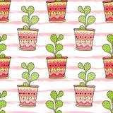 kaktusy deseniują bezszwowego Kolorowa kreskówka kwitnie w garnkach tła projekta tkaniny wektor Zdjęcia Stock