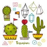 Kaktusy i sukulenty w garnkach Fotografia Royalty Free