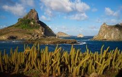 Kaktusy, Kapeluszowy wzgórze i Kosmata wyspa, Sueste zatoka, Fernando De Noronha, Brazylia zdjęcia stock