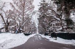 Kakunodate - Akita en hiver, enneigement au-dessus de la ville photo libre de droits
