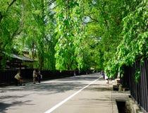 Kakunodate samurajområde i Akita, Japan Royaltyfri Fotografi