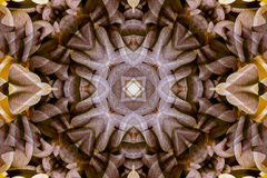 Kaléidoscope avec le bel ornamental de couleur Image stock