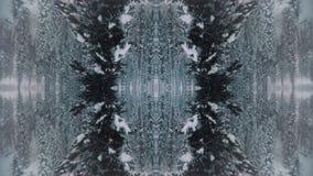 Kaléidoscope créatif Arbres d'hiver de Milou banque de vidéos