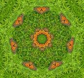 Kaléidoscope de monarque Image libre de droits
