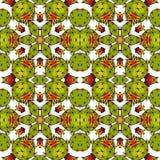 Kaléidoscope des succulents Photos stock