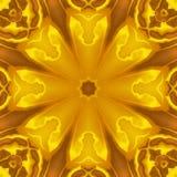 Kaléidoscope ensoleillé de fleur Images libres de droits
