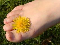 kal fot med blomman Royaltyfria Foton