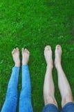Kal fot och ben i gräs fotografering för bildbyråer