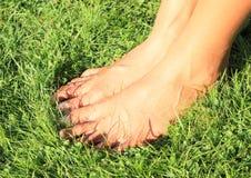 Kal fot på gräs Royaltyfria Foton