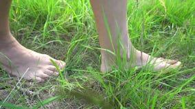 Kal fot som går på gräset, begrepp av frihet och lycka lager videofilmer