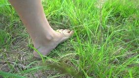 Kal fot som går på gräset, begrepp av frihet och lycka arkivfilmer