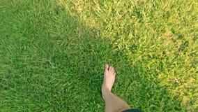 Kal fot som går på gräset POV, begrepp av frihet och lycka i ultrarapid lager videofilmer