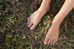 Kal kvinnlig fot på ett gräs Arkivfoto