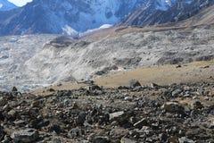 Kala Patthar очень популярно с trekkers в области Mount Everest стоковые изображения