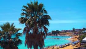 Kalabrien-Küste mit Palmen Italien lizenzfreie stockbilder